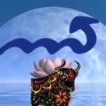Stier-Vollmond = Skorpion-Mond