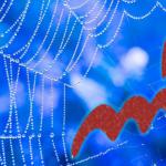 Skorpion-Neumond 2018 - gefangen im Netz der Existenzen