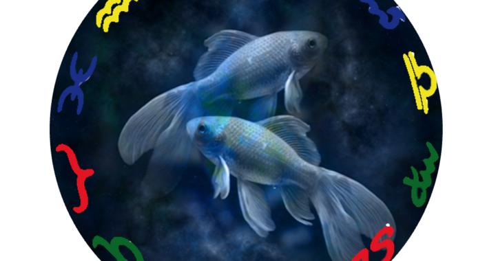 Fische 2021 Bild