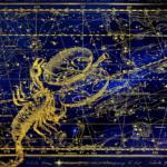 Skorpion 2021 Bild